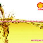Top 3 dòng sản phẩm Dầu Bôi Trơn Shell bán chạy nhất 2021
